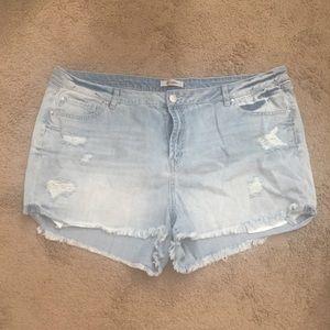 Refuge Jean Shorts